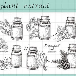 TB2.SHLvk9WBuNjSspeXXaz5VXa 371054344 300x300 - MOODTAPE® x Plant Extract