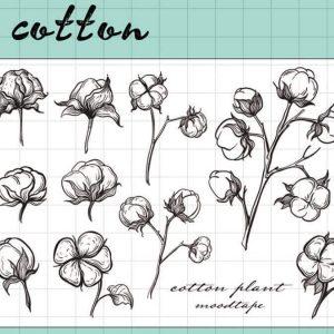 cotton 300x300 - MOODTAPE® x Cotton